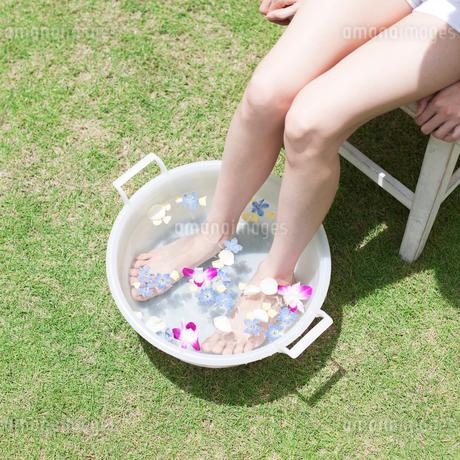足を水に浸す女性の写真素材 [FYI01901293]