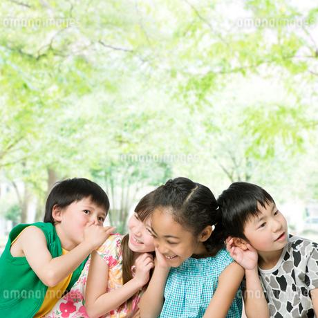 笑顔の4人の子供の写真素材 [FYI01901307]