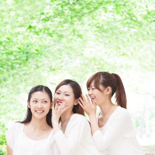 新緑の中で内緒話をする女性達の写真素材 [FYI01901410]