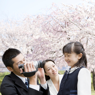 桜と記念撮影をする家族の写真素材 [FYI01902965]