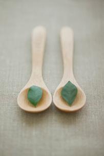 葉とスプーンの写真素材 [FYI01903051]