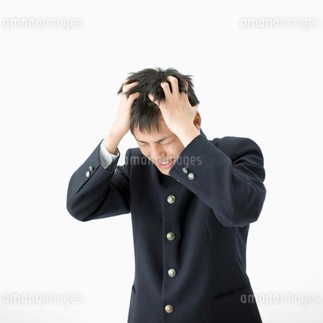 頭を抱える男子高校生の写真素材 [FYI01903248]