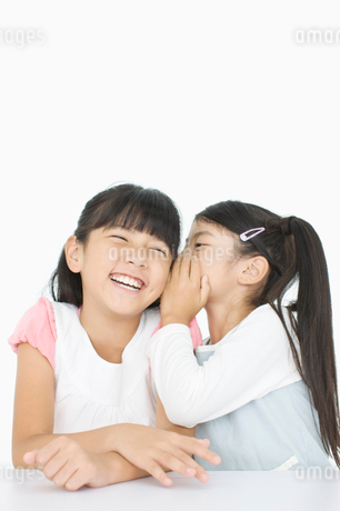 話をする女の子たちの写真素材 [FYI01903670]