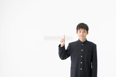 指を指す男子高校生の写真素材 [FYI01904320]