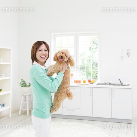 トイプードルを抱き上げる女性の写真素材 [FYI01905865]