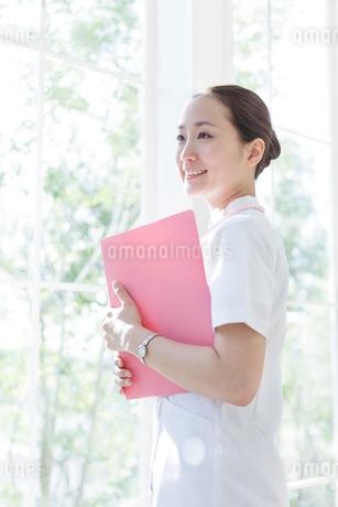 ファイルを持ち窓辺に立つ看護師の写真素材 [FYI01906155]