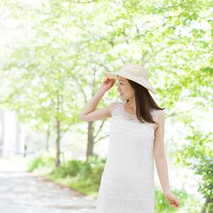 並木道に立つ女性の写真素材 [FYI01907618]