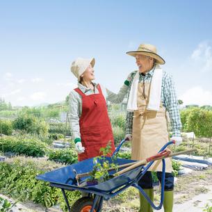畑に立つシニア夫婦の写真素材 [FYI01907642]