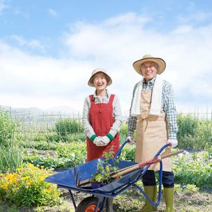 畑に立つシニア夫婦の写真素材 [FYI01907959]