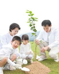 植樹をする家族の写真素材 [FYI01909480]