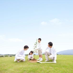 植樹をする家族の写真素材 [FYI01910085]