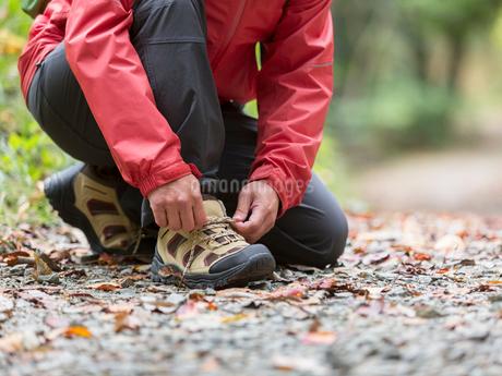 靴紐を結ぶ中高年男性の足元の写真素材 [FYI01912570]