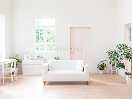 リビングルームのイメージの写真素材 [FYI01912836]