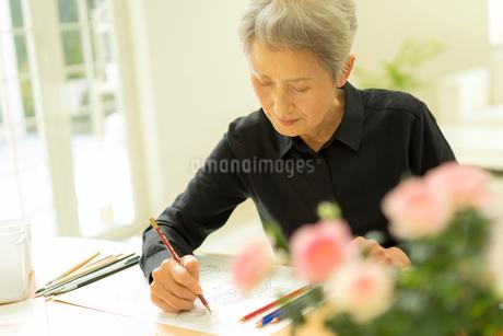 色鉛筆を持つシニア女性の写真素材 [FYI01913250]