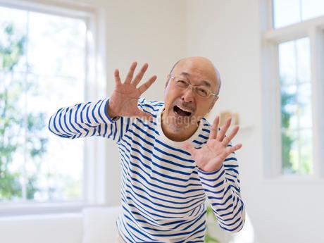 掌を広げる男性の写真素材 [FYI01913278]