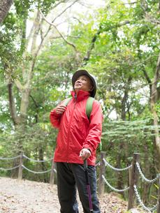 トレッキングステッキを持つ中高年男性の写真素材 [FYI01913432]