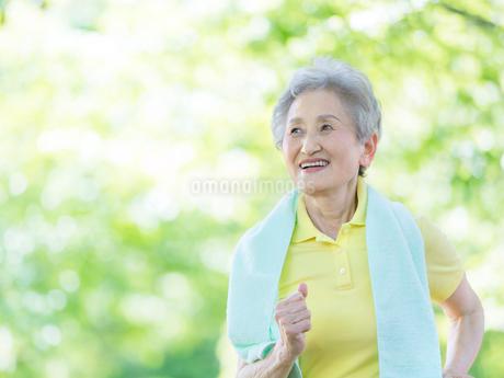 ジョギングをするシニア女性の写真素材 [FYI01915776]