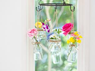 窓辺に吊るされた花瓶の写真素材 [FYI01916297]