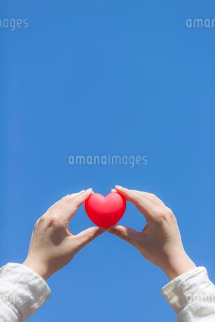ハートを持つ女性の手の写真素材 [FYI01916948]
