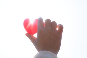 ハートを持つ女性の手の写真素材 [FYI01917009]