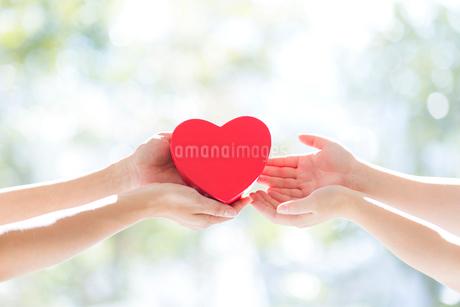 ハートを手渡す女性の手の写真素材 [FYI01917037]