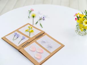 ノートに並べられた花の写真素材 [FYI01917079]