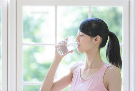 水を飲む女性の写真素材 [FYI01917285]