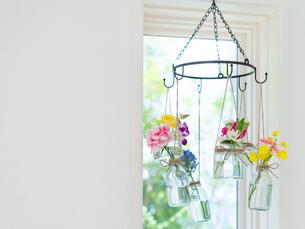 窓辺に吊るされた花瓶の写真素材 [FYI01917444]