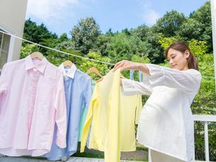 洗濯物を広げる妊婦の写真素材 [FYI01917499]