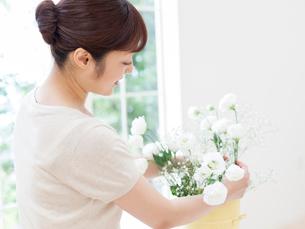 生けた花を整える女性の写真素材 [FYI01917885]
