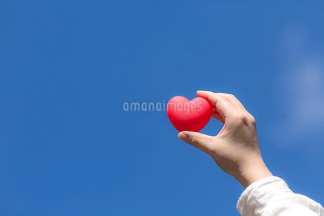ハートを持つ女性の手の写真素材 [FYI01918085]