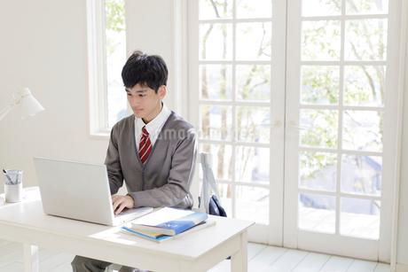 ノートパソコンに向かう男子高校生の写真素材 [FYI01919002]