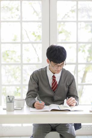 勉強をする男子高校生の写真素材 [FYI01920315]