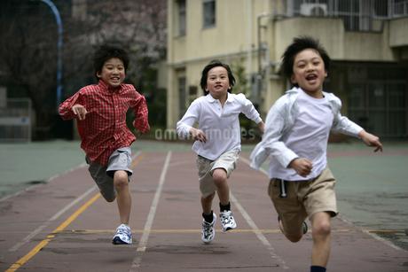 校庭を走る男の子たちの写真素材 [FYI01921272]