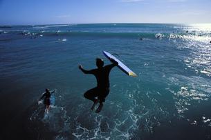 ハワイ 南国スナップの写真素材 [FYI01922810]
