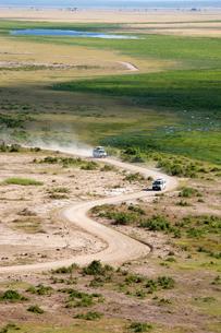 サバンナの道を走る自動車の写真素材 [FYI01923347]