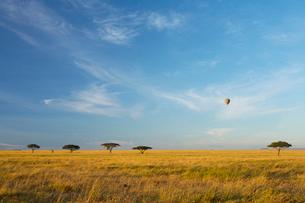 草原と空の写真素材 [FYI01925122]