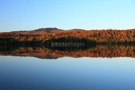 紅葉と湖と青空の写真素材 [FYI01925383]
