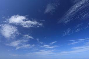 青空の写真素材 [FYI01925837]