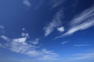青空の写真素材 [FYI01925893]