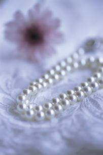 パールのネックレスとガーベラの写真素材 [FYI01926200]
