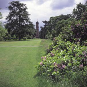 ロンドンの王立植物園と芝生 イギリスの写真素材 [FYI01926313]