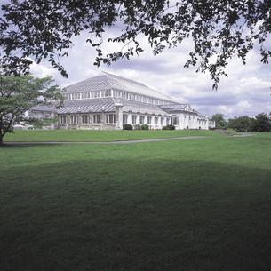 ロンドンの王立植物園と芝生 イギリスの写真素材 [FYI01926476]