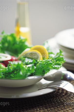 グリーンサラダの写真素材 [FYI01926486]