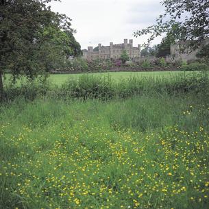 リーズ城と草原 イギリスの写真素材 [FYI01926546]