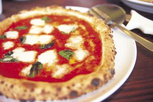 マルゲリータピザの写真素材 [FYI01926621]
