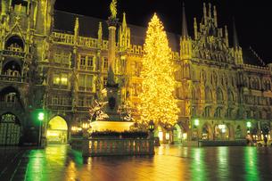 ミュンヘン市庁舎前のクリスマスツリーの写真素材 [FYI01926724]