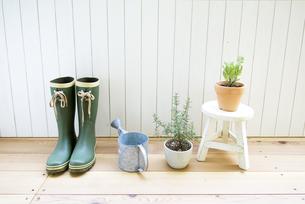 ブーツとジョウロと観葉植物の写真素材 [FYI01926950]