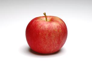1個のリンゴの写真素材 [FYI01927286]
