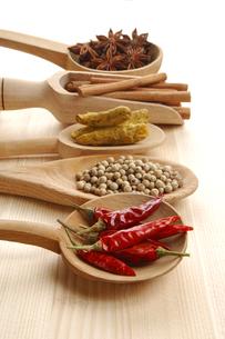 赤唐辛子と白胡椒とウコンとシナモンと八角の写真素材 [FYI01927383]